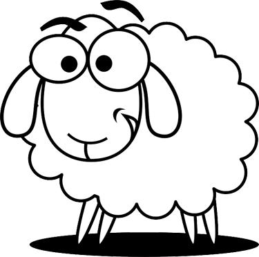 sheep-year